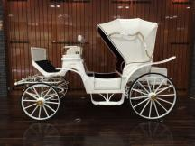 Coyaltix Carriage/Victoria(W)/2014-09