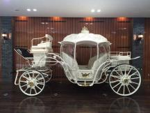 Coyaltix Carriage/Cinderella(W)/2014-11